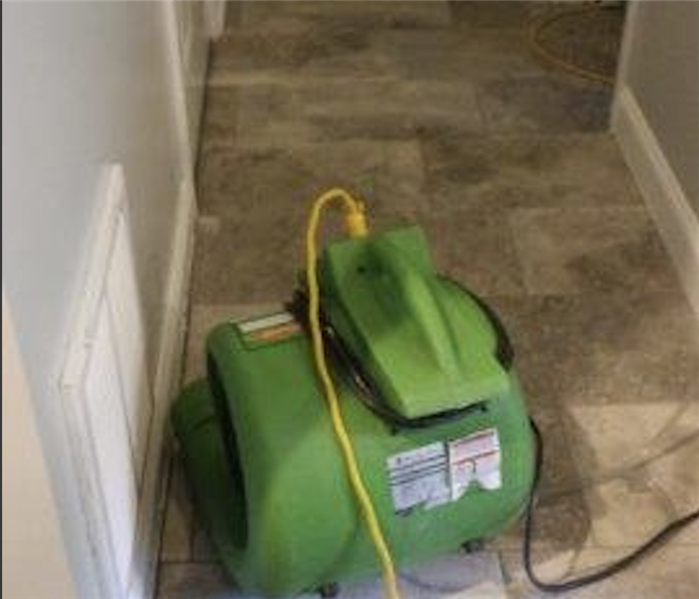 Avoid Mold Damage - Call SERVPRO of West Knoxville/Farragut After
