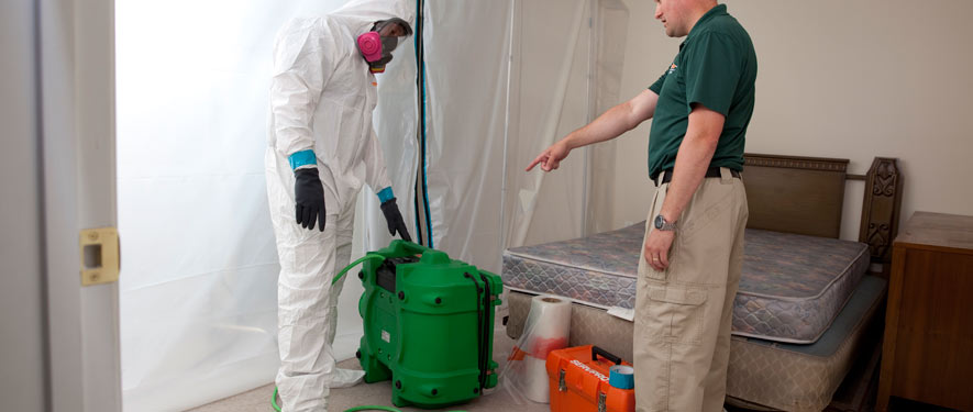 Knoxville, TN mold removal process